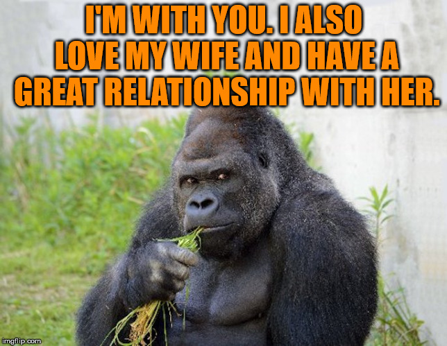 sexy monkey,memes,gorilla | I'M WITH YOU. I ALSO LOVE MY WIFE AND HAVE A GREAT RELATIONSHIP WITH HER. | image tagged in sexy monkey memes gorilla | made w/ Imgflip meme maker