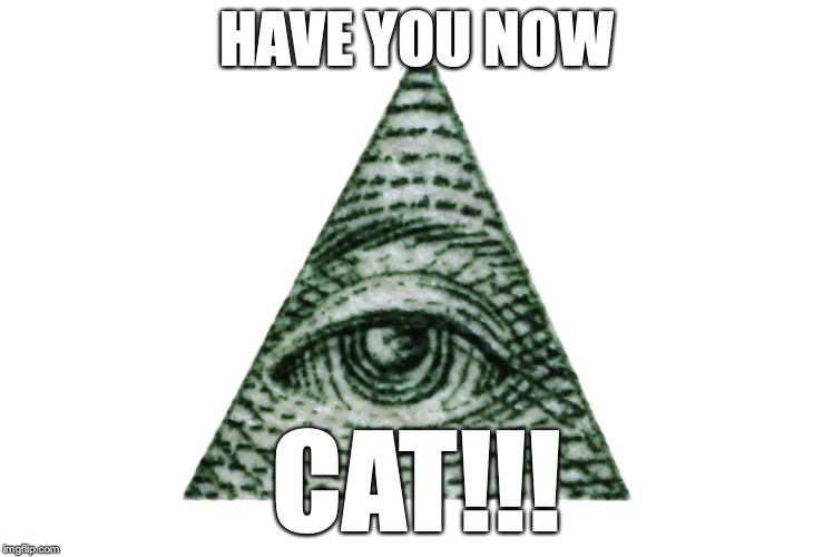 HAVE YOU NOW CAT!!! | made w/ Imgflip meme maker