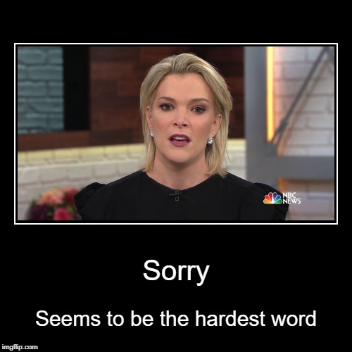 Sorry song | Sorry | Seems to be the hardest word | image tagged in funny,demotivationals,megyn kelly,i'm sorry,fired | made w/ Imgflip demotivational maker