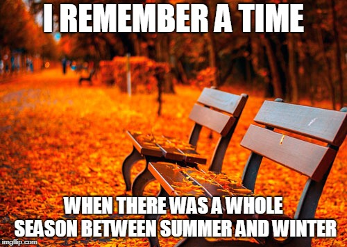 Not that i feel hot or cold about it... | I REMEMBER A TIME WHEN THERE WAS A WHOLE SEASON BETWEEN SUMMER AND WINTER | image tagged in fall | made w/ Imgflip meme maker