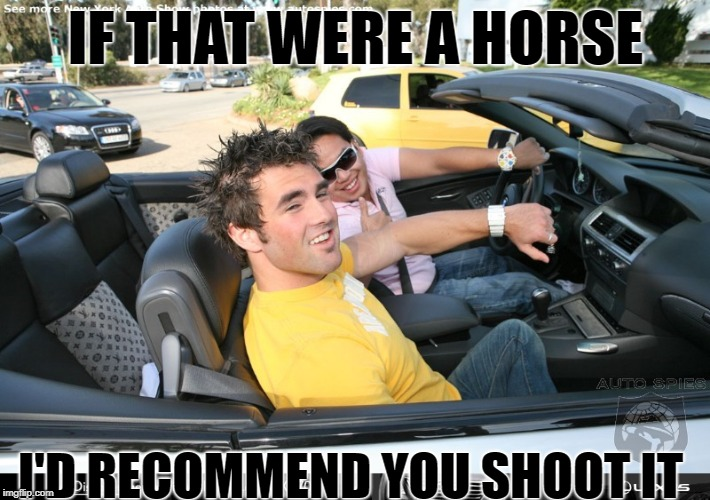 IF THAT WERE A HORSE I'D RECOMMEND YOU SHOOT IT | made w/ Imgflip meme maker