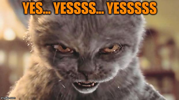 Evil Cat | YES... YESSSS... YESSSSS | image tagged in evil cat | made w/ Imgflip meme maker