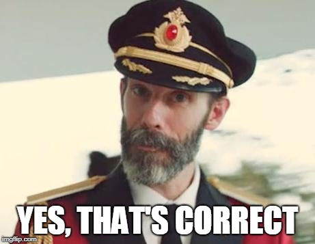 Captain Obvious | YES, THAT'S CORRECT | image tagged in captain obvious | made w/ Imgflip meme maker