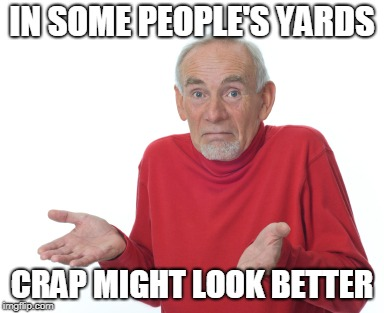 Old Man Shrugging | IN SOME PEOPLE'S YARDS CRAP MIGHT LOOK BETTER | image tagged in old man shrugging | made w/ Imgflip meme maker