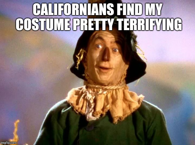 Straw man  | CALIFORNIANS FIND MY COSTUME PRETTY TERRIFYING | image tagged in wizard of oz scarecrow | made w/ Imgflip meme maker