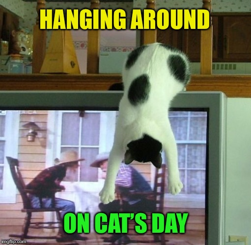 HANGING AROUND ON CAT'S DAY | made w/ Imgflip meme maker