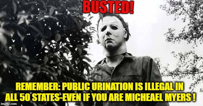 IT'S THE LAW! | BUSTED! REMEMBER: PUBLIC URINATION IS ILLEGAL IN ALL 50 STATES-EVEN IF YOU ARE MICHEAEL MYERS ! | image tagged in halloween 9 days,urinal guy,public,peeing,laws | made w/ Imgflip meme maker