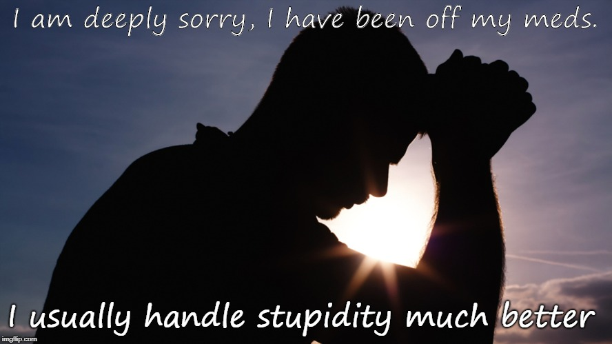 Stoooopid | I am deeply sorry, I have been off my meds. I usually handle stupidity much better | image tagged in stupid,stupid people,special kind of stupid | made w/ Imgflip meme maker