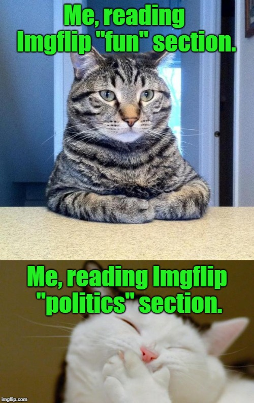 "Tickle My Funny Bone | Me, reading Imgflip ""fun"" section. Me, reading Imgflip ""politics"" section. 