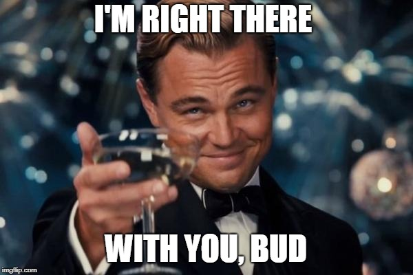 Leonardo Dicaprio Cheers Meme | I'M RIGHT THERE WITH YOU, BUD | image tagged in memes,leonardo dicaprio cheers | made w/ Imgflip meme maker