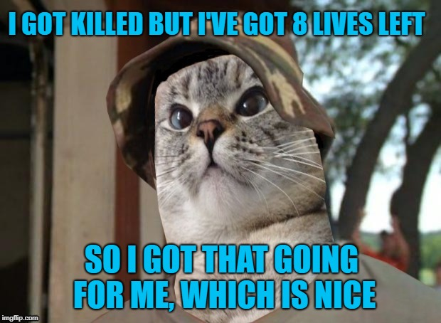 I GOT KILLED BUT I'VE GOT 8 LIVES LEFT SO I GOT THAT GOING FOR ME, WHICH IS NICE | made w/ Imgflip meme maker