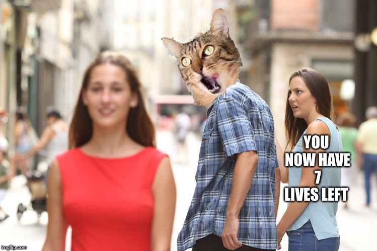 YOU NOW HAVE 7 LIVES LEFT | made w/ Imgflip meme maker