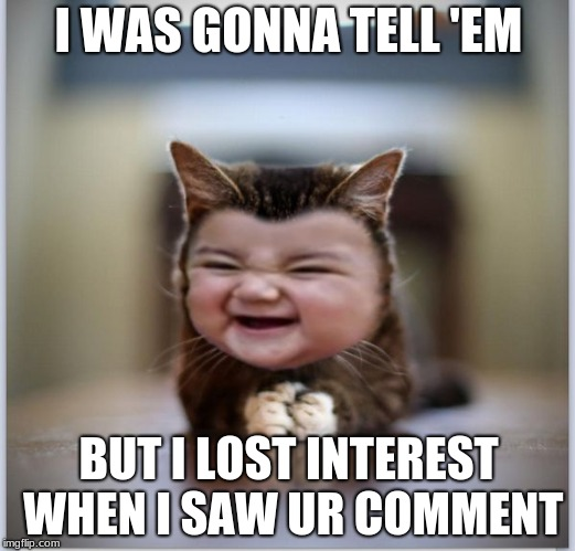 evil toddler kitten | I WAS GONNA TELL 'EM BUT I LOST INTEREST WHEN I SAW UR COMMENT | image tagged in evil toddler kitten | made w/ Imgflip meme maker