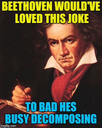bethoven | BEETHOVEN WOULD'VE LOVED THIS JOKE TO BAD HES BUSY DECOMPOSING | image tagged in bethoven | made w/ Imgflip meme maker