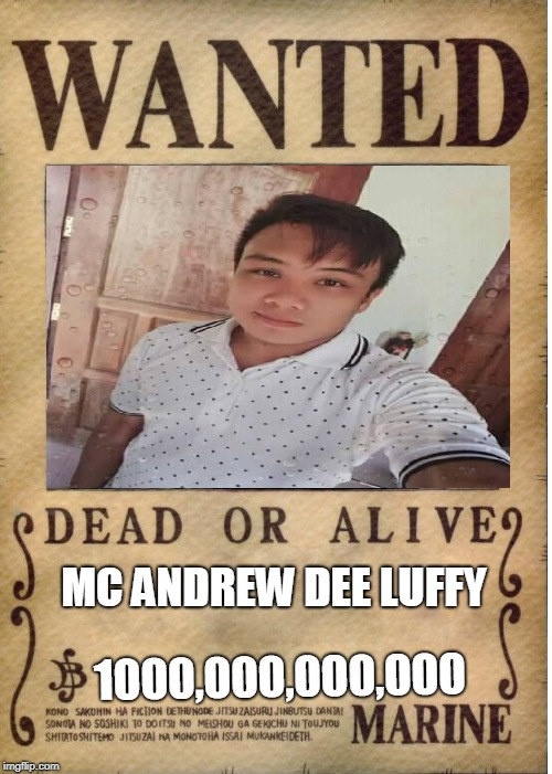one piece wanted poster template imgflip