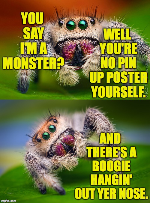 Monster Week. Oct. 25 to Oct. 31. A heavencanwait Non-Event ( : | YOU SAY I'M A MONSTER? AND THERE'S A BOOGIE HANGIN' OUT YER NOSE. WELL YOU'RE NO PIN UP POSTER YOURSELF. | image tagged in memes,monsters,relativity | made w/ Imgflip meme maker