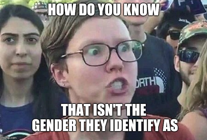 Triggered Liberal | HOW DO YOU KNOW THAT ISN'T THE GENDER THEY IDENTIFY AS | image tagged in triggered liberal | made w/ Imgflip meme maker