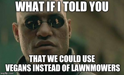 Vegan Lawn-mowing services | WHAT IF I TOLD YOU THAT WE COULD USE VEGANS INSTEAD OF LAWNMOWERS | image tagged in memes,matrix morpheus,vegan,funny memes,good memes | made w/ Imgflip meme maker