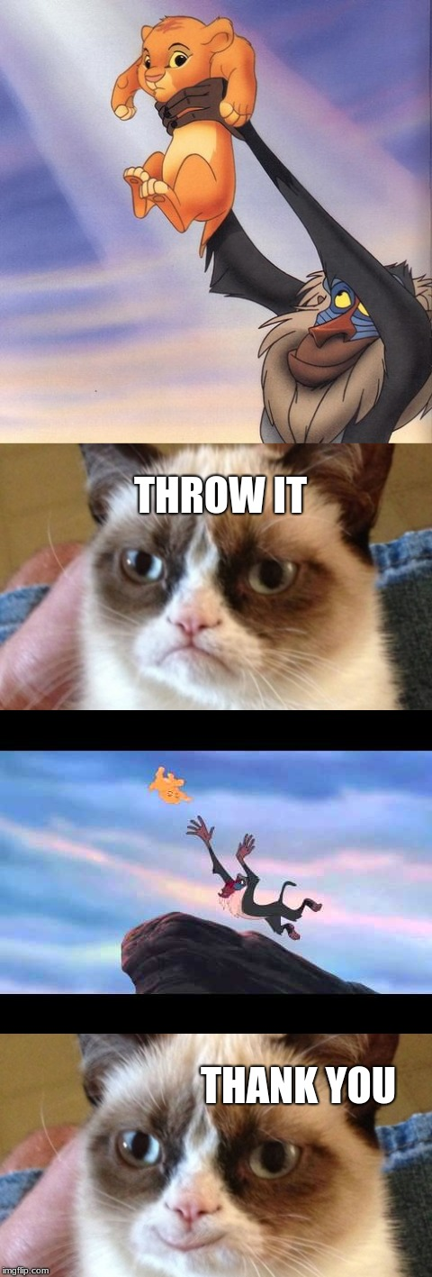 Grumpy cat is finally having a good time :) | THROW IT THANK YOU | image tagged in funny,lol,memes,funny memes,grumpy cat,cats | made w/ Imgflip meme maker
