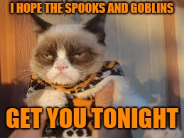Grumpy Cat Halloween Meme | I HOPE THE SPOOKS AND GOBLINS GET YOU TONIGHT | image tagged in memes,grumpy cat halloween,grumpy cat,halloween,funny | made w/ Imgflip meme maker