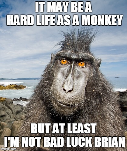IT MAY BE A HARD LIFE AS A MONKEY BUT AT LEAST I'M NOT BAD LUCK BRIAN | made w/ Imgflip meme maker
