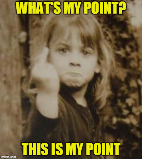 Read My Finger | WHAT'S MY POINT? THIS IS MY POINT | image tagged in little girl,flipping off | made w/ Imgflip meme maker