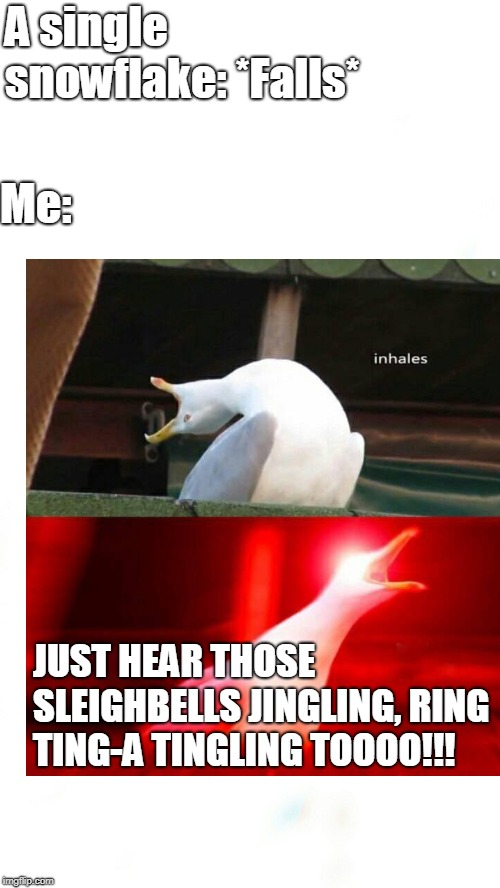 First Snow | A single snowflake: *Falls* Me: JUST HEAR THOSE SLEIGHBELLS JINGLING, RING TING-A TINGLING TOOOO!!! | image tagged in inhaling seagull,seagull,snow,winter | made w/ Imgflip meme maker