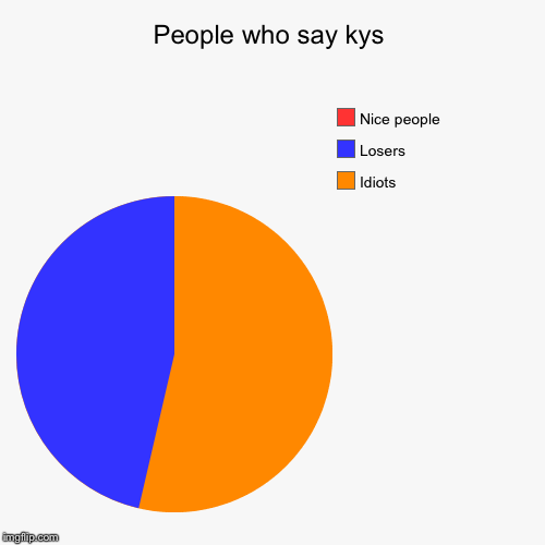 People who say kys | Idiots, Losers , Nice people | image tagged in funny,pie charts | made w/ Imgflip pie chart maker