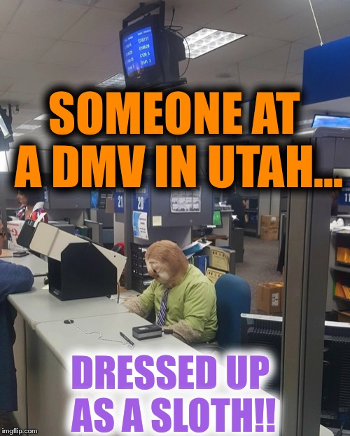 DMV is highly entertaining today! HAPPY HALLOWEEN!! | SOMEONE AT A DMV IN UTAH... DRESSED UP AS A SLOTH!! | image tagged in dmv,halloween,sloth,zootopia sloth | made w/ Imgflip meme maker