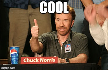 Chuck Norris Approves Meme | COOL | image tagged in memes,chuck norris approves,chuck norris | made w/ Imgflip meme maker