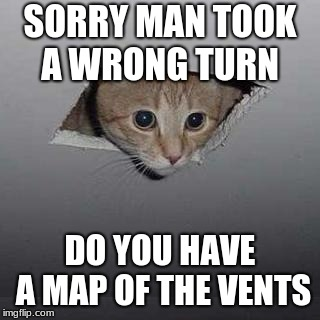 Ceiling Cat Meme | SORRY MAN TOOK A WRONG TURN DO YOU HAVE A MAP OF THE VENTS | image tagged in memes,ceiling cat | made w/ Imgflip meme maker