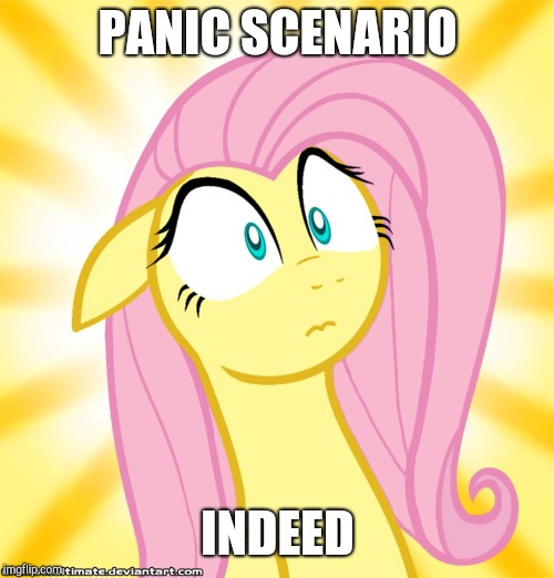 Shocked Fluttershy | PANIC SCENARIO INDEED | image tagged in shocked fluttershy | made w/ Imgflip meme maker