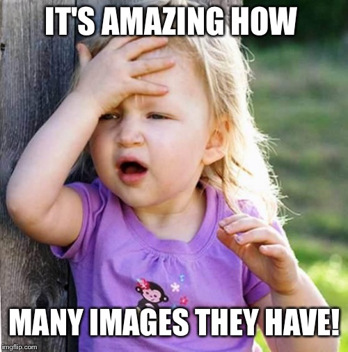duh | IT'S AMAZING HOW MANY IMAGES THEY HAVE! | image tagged in duh | made w/ Imgflip meme maker
