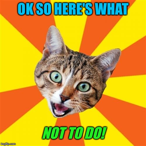 Bad Advice Cat Meme | OK SO HERE'S WHAT NOT TO DO! | image tagged in memes,bad advice cat | made w/ Imgflip meme maker