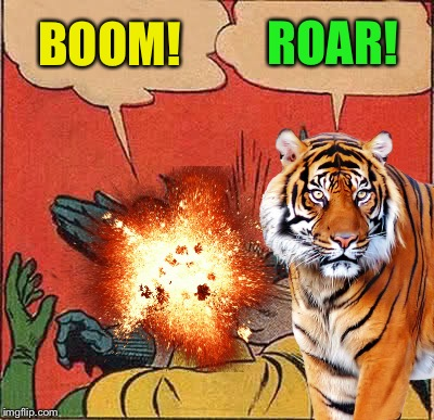 Tiger Bomb Ask For It By Name Imgflip