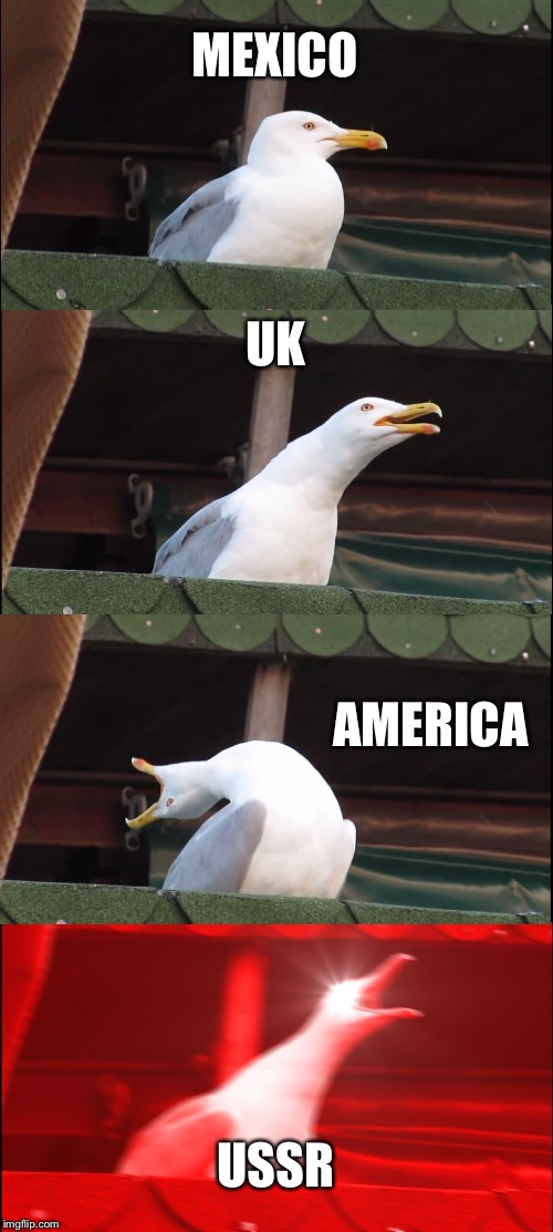 Inhaling Seagull Meme | MEXICO UK AMERICA USSR | image tagged in memes,inhaling seagull | made w/ Imgflip meme maker