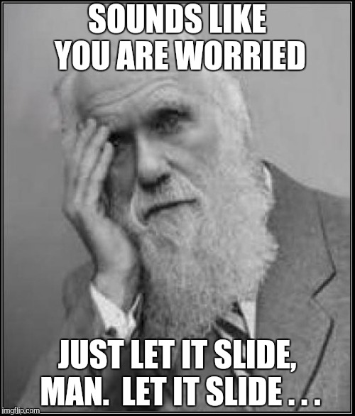 darwin facepalm | SOUNDS LIKE YOU ARE WORRIED JUST LET IT SLIDE, MAN.  LET IT SLIDE . . . | image tagged in darwin facepalm | made w/ Imgflip meme maker