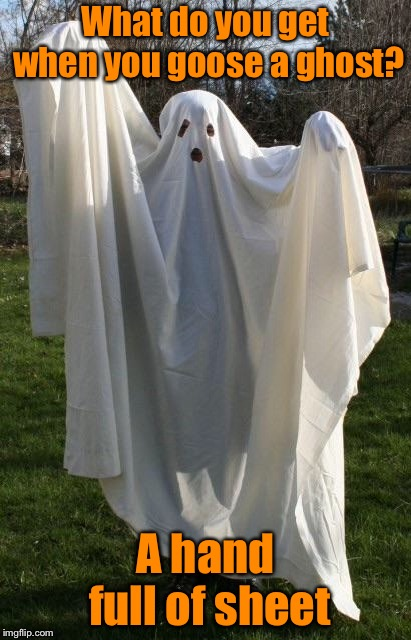 Happy Halloween | What do you get when you goose a ghost? A hand full of sheet | image tagged in lonely ghost,halloween | made w/ Imgflip meme maker