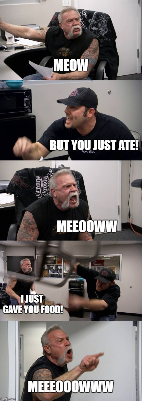 dogs>cats | MEOW BUT YOU JUST ATE! MEEOOWW I JUST GAVE YOU FOOD! MEEEOOOWWW | image tagged in memes,american chopper argument,trhtimmy,cats,pets,animals | made w/ Imgflip meme maker
