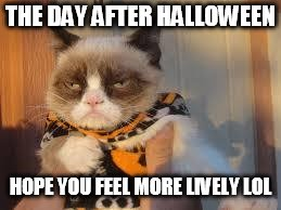Grumpy Cat Halloween | THE DAY AFTER HALLOWEEN HOPE YOU FEEL MORE LIVELY LOL | image tagged in memes,grumpy cat halloween,grumpy cat | made w/ Imgflip meme maker