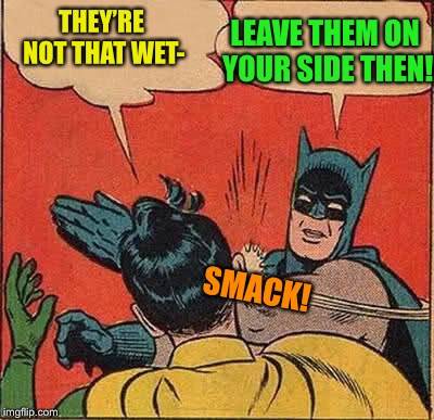 Batman Slapping Robin Meme | THEY'RE NOT THAT WET- LEAVE THEM ON YOUR SIDE THEN! SMACK! | image tagged in memes,batman slapping robin | made w/ Imgflip meme maker