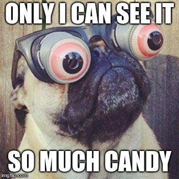 ONLY I CAN SEE IT SO MUCH CANDY | image tagged in pug funny face | made w/ Imgflip meme maker
