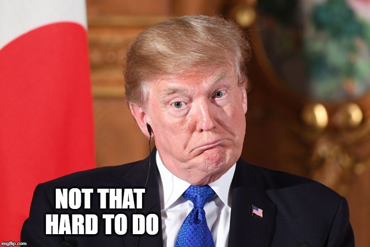 Trump dumbfounded | NOT THAT HARD TO DO | image tagged in trump dumbfounded | made w/ Imgflip meme maker