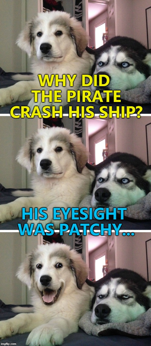 Or it may have been an insurance scam... :) | WHY DID THE PIRATE CRASH HIS SHIP? HIS EYESIGHT WAS PATCHY... | image tagged in bad pun dogs,memes,pirates | made w/ Imgflip meme maker