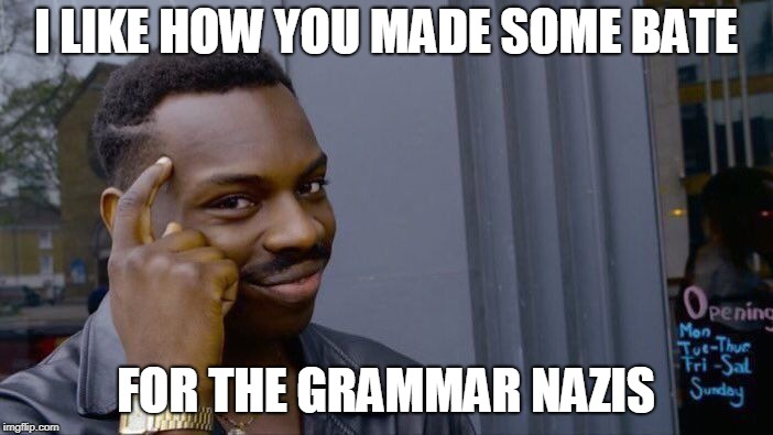 Roll Safe Think About It Meme | I LIKE HOW YOU MADE SOME BATE FOR THE GRAMMAR NAZIS | image tagged in memes,roll safe think about it | made w/ Imgflip meme maker