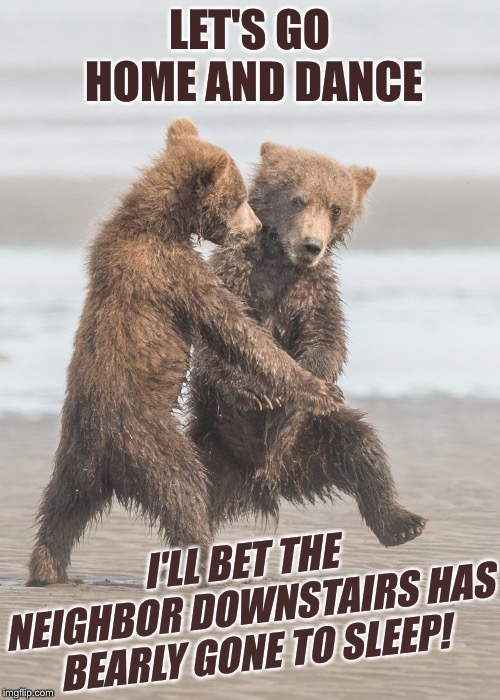 LET'S GO HOME AND DANCE I'LL BET THE NEIGHBOR DOWNSTAIRS HAS BEARLY GONE TO SLEEP! | image tagged in funny animals,dancing bears,neighbors,palaxote | made w/ Imgflip meme maker