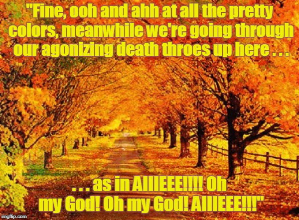 "so who's gonna pay for all the tiny headstones? | ""Fine, ooh and ahh at all the pretty colors, meanwhile we're going through our agonizing death throes up here . . . . . . as in AIIIEEE!!!!  