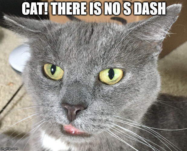 CAT! THERE IS NO S DASH | made w/ Imgflip meme maker