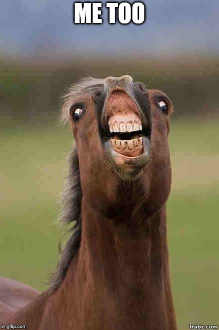 horse face | ME TOO | image tagged in horse face | made w/ Imgflip meme maker