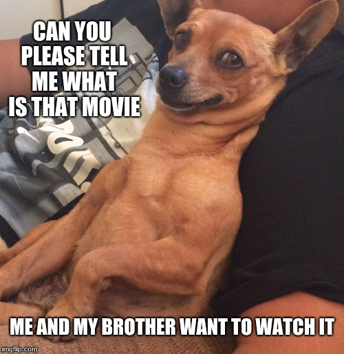 Max the Sarcastic Dog | CAN YOU PLEASE TELL ME WHAT IS THAT MOVIE ME AND MY BROTHER WANT TO WATCH IT | image tagged in max the sarcastic dog | made w/ Imgflip meme maker